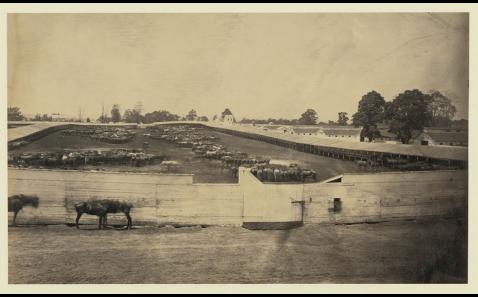 Giesboro point